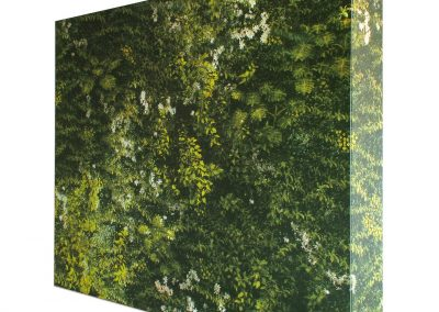 Fabric Cube Green Wall